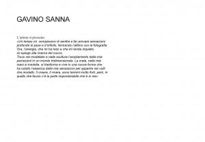 Gavino Sanna