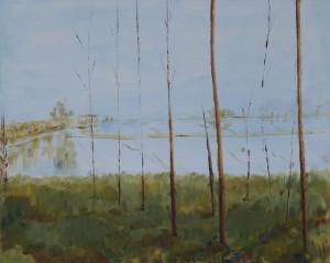 alberi in risaia